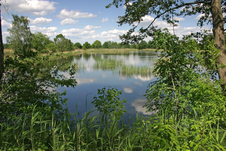 Staatsbetrieb Sachsenforst – Biosphärenreservatsverwaltung Oberlausitzer Heide- und Teichlandschaft